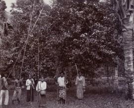 Het plukken van nootmuskaat door Javaanse contractkoelies, Banda, oktober 1927 (bron: MuMa)