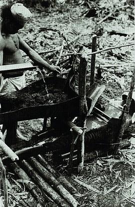 Sago wassen (bron: Edwards 1993)